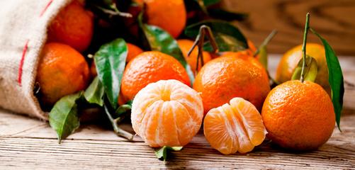 Frische Bio Clementinen und Mandarinen