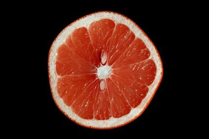 Grapefruitkerne
