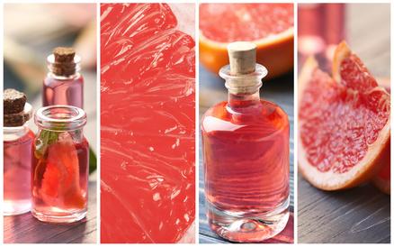Grapefruitsamenextrakt