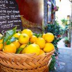 Der Herkunft der Zitrone auf der Spur