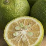 Kabosu Zitrusfrucht