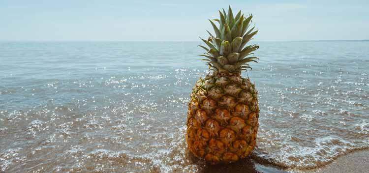 Ananas In Der Schwangerschaft